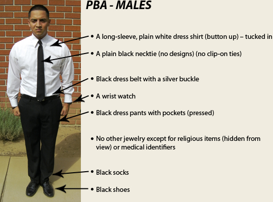 Professional Business Attire Male